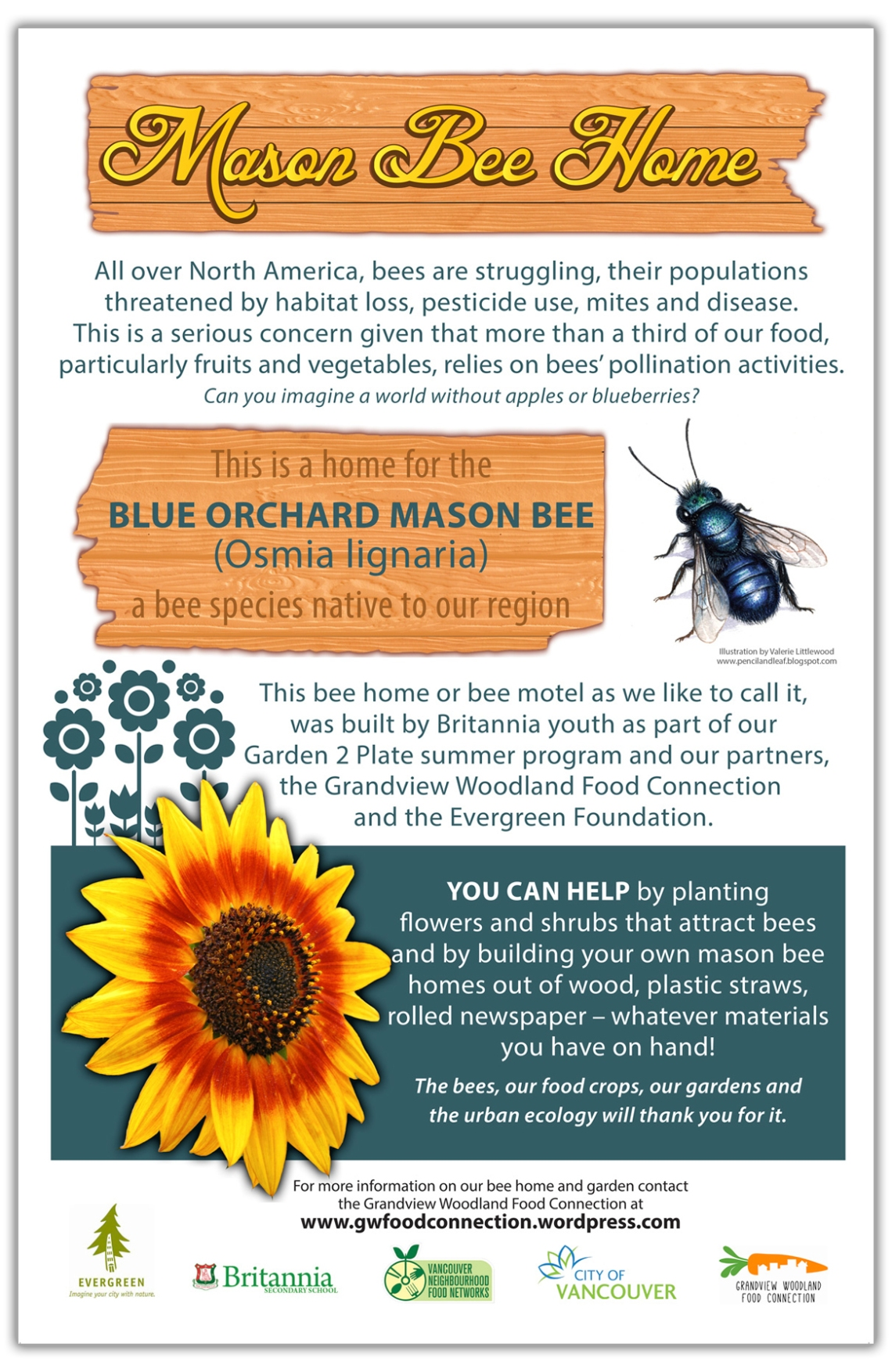Blue Mason bee posterGWFCcrops
